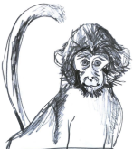 Illustration of a monkey I'd like to fuck