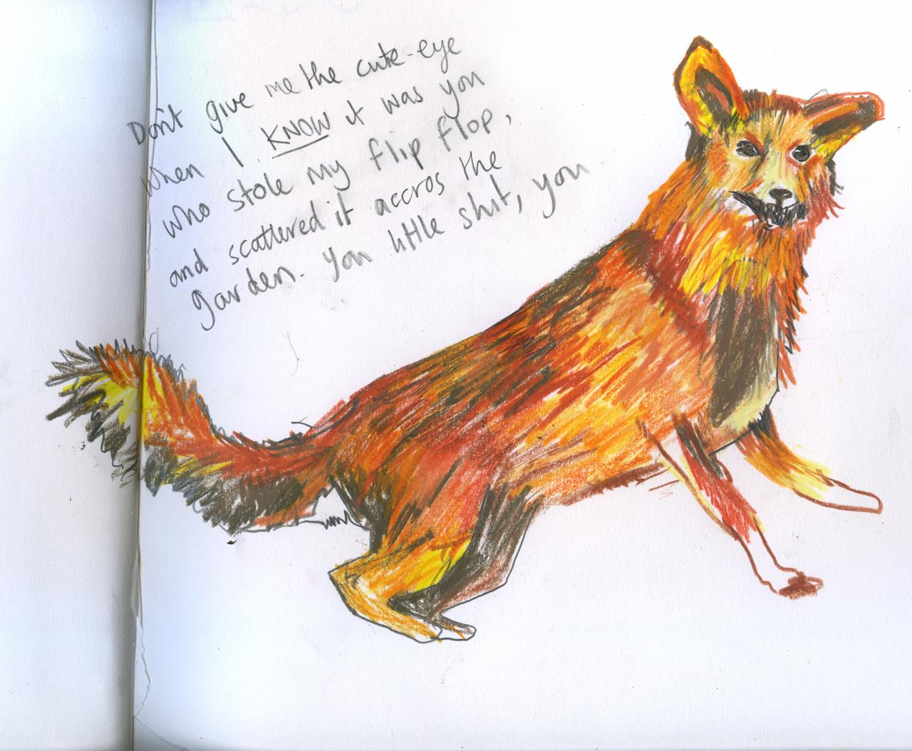 BAD fox. I could kick you. I could.
